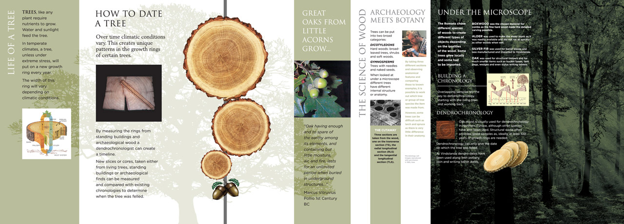 'Life of a Tree' and Dendrochronology information panels