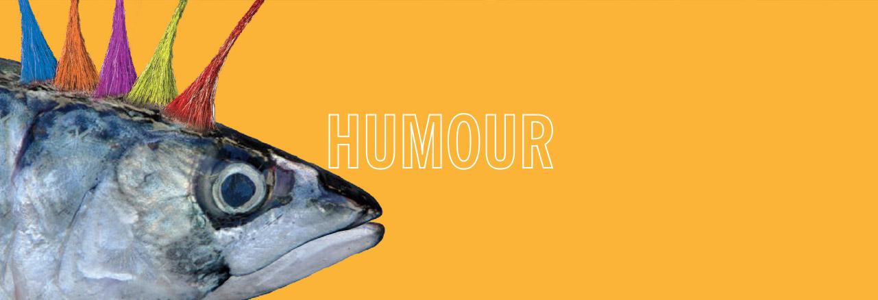 humour_cat